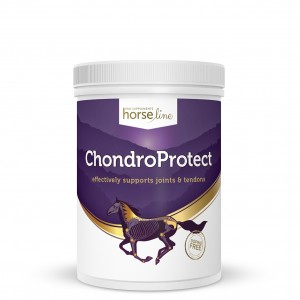 Preparat na stawy HORSE LINE ChondroProtect 900g