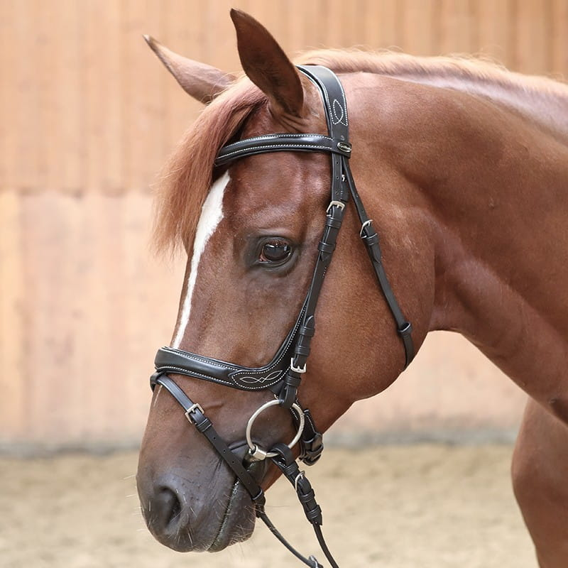 7177f50f2018e Ogłowie KAVALKADE Ivy Horse-Trade | Sklep jeździecki